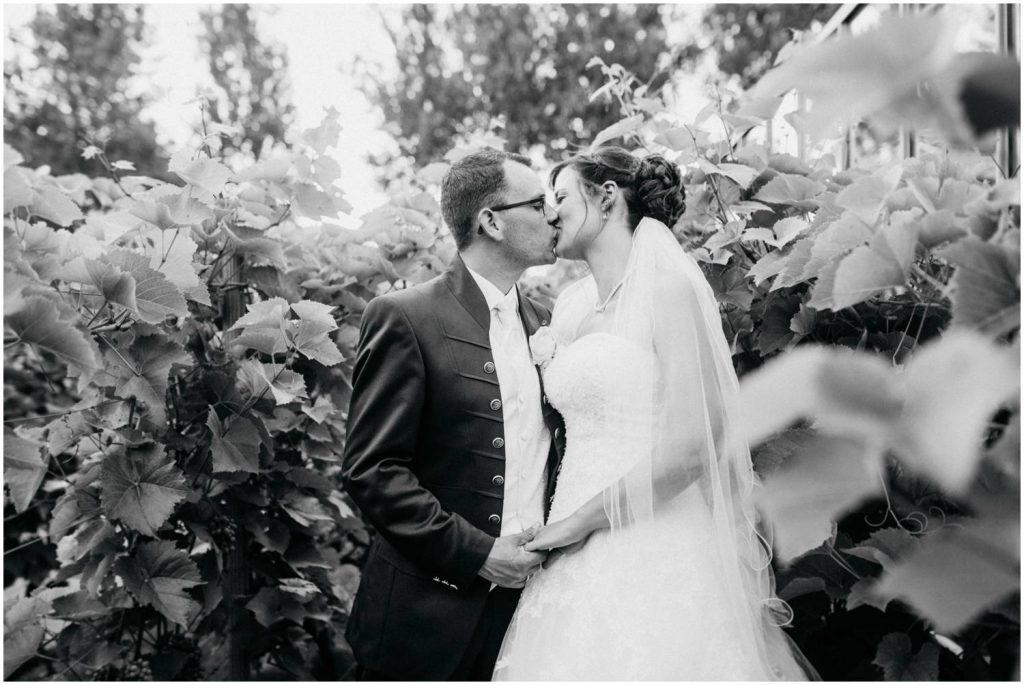 Hochzeitsfotos auf dem Gut Horn Gristede